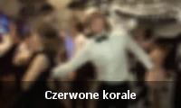 THE ACORDS Czerwone korale